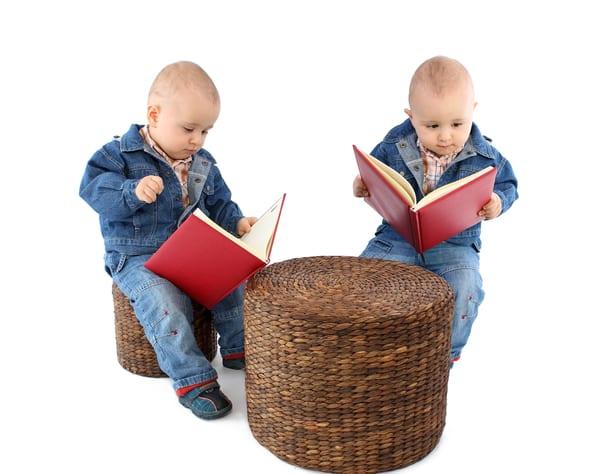 twin pregnancy books