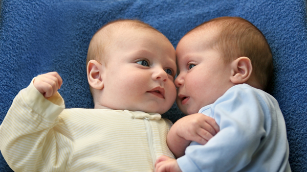 what are maternal twins and other facts you need to know
