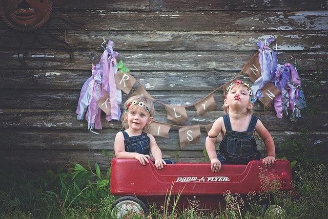 twins on a wagon